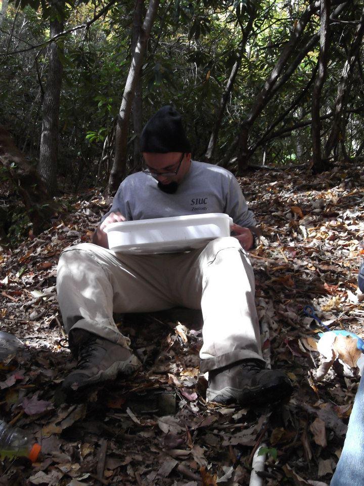 River pollution essay