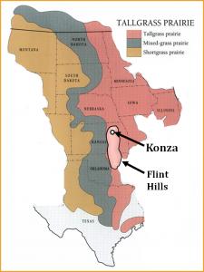 konza_historic prairie